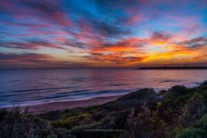 culburra_beach_seascape_dawn_penquin_head